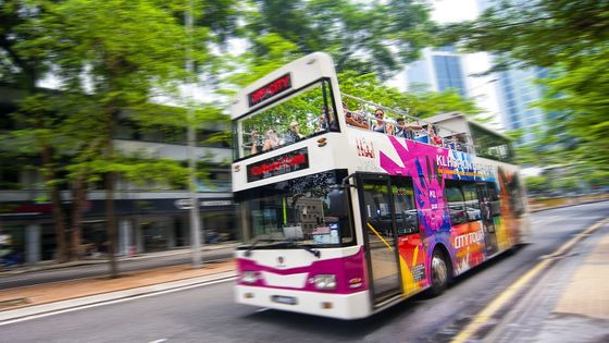KL Hop-On Hop-Off City Tour (Limited Time Half Price)