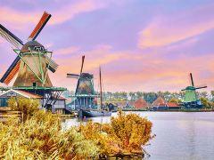7日阿姆斯特丹·风车美景+郁金香芬芳+名作《夜巡》