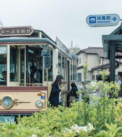 松岛町游记图文-夏之初,游荡在雅人叔的金色梦乡——仙台、盛冈的独角戏