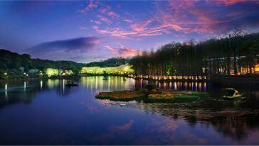 湖南省森林植物园 (3)