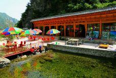 大墩峡景区-临夏-小熊猫游世界