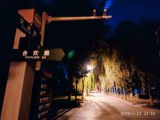 塔里木大学-阿拉尔-_CFT01****0705319