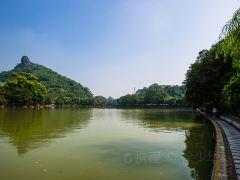漓江+桂林+龙胜五日游