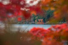 芦之湖-箱根-C-IMAGE