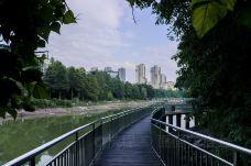 金科天湖公园-重庆-面面在路上