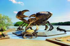 大螃蟹雕像-甲米-doris圈圈