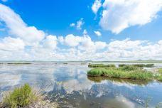 贺斯格淖尔湿地公园-锡林郭勒盟-river2014大河