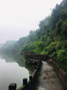 沐川乌蒙谷歌景区-沐川-豆豆熊猫