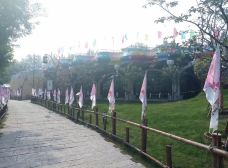 西纸坊黄河古村-滨州-doris圈圈