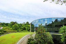 艺术、设计与媒体学院-新加坡-行旅他乡