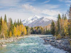 北疆穿越胡杨林风光自驾9日游
