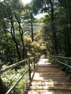 莽山国家森林公园-莽山-M38****3023