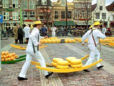 阿克马乳酪市场-阿尔克马尔-贪吃大脸猫