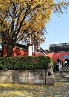 栖霞寺-南京-无语的leechi288
