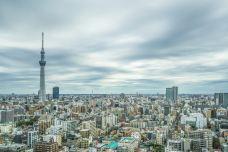 东京-是条胳膊