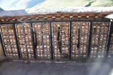 比如骷髅墙-比如-l果子狸