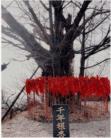 白兆山李白文化旅游区-安陆-花尘
