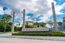 香港中文大学(深圳)-深圳