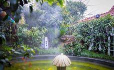第一世界休闲酒店(温泉)-杭州-小熊猫122