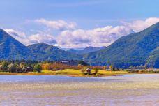 八木崎公园-富士河口湖町-尊敬的会员