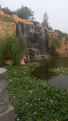 仿山温泉-定陶区-_CFT01****1259830