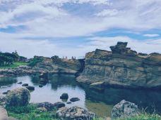 狮子岩-锡吉里耶-兰夏的果实