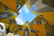立体方块屋-鹿特丹-那敢情好了
