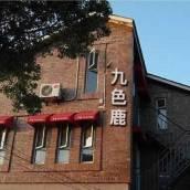 上海九色鹿民宿