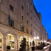 格拉納達美利亞酒店