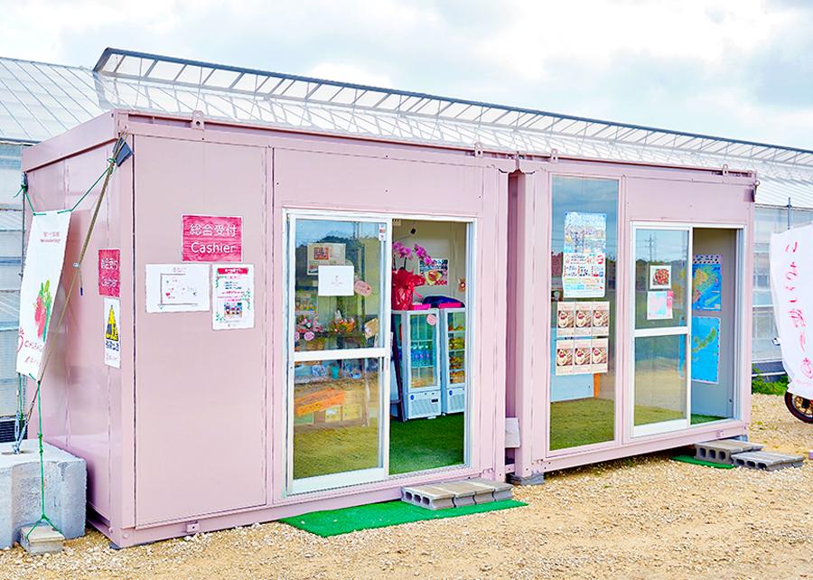 오키나와 딸기농장 입장권 (딸기따기 체험 포함)