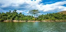 西双版纳热带雨林国家公园望天树景区-西双版纳