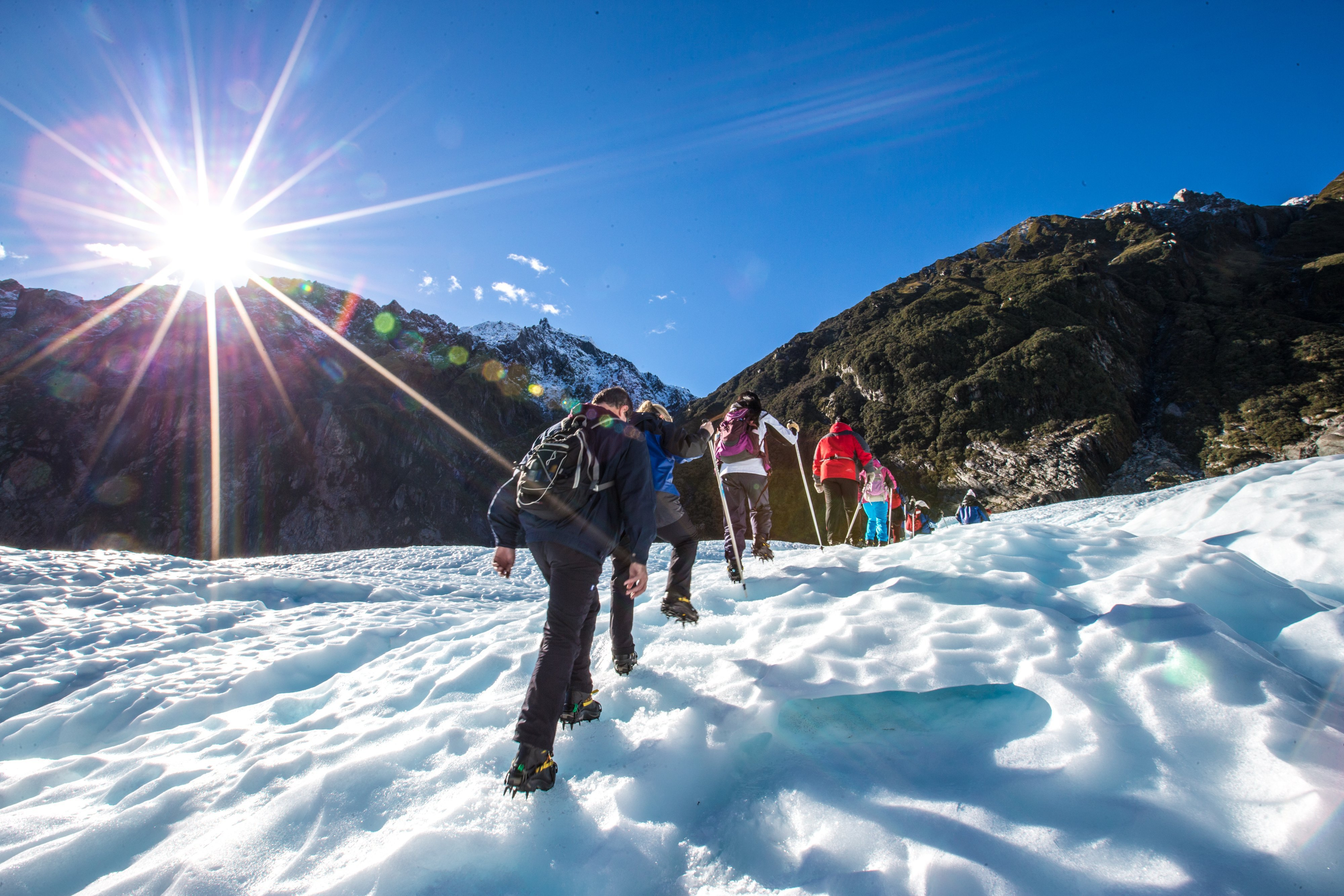 Fox Glacier Guided Walking, Heli Hiking & Ice Climbing