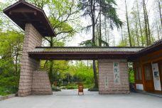 曲院风荷-杭州-尊敬的会员