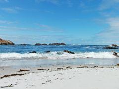 美国西海岸自驾14日深度游