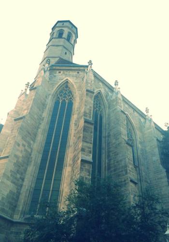 维也纳城市剪影   维也纳城市剪影   雅典娜   维也纳城市剪影   市政厅   维也纳城市剪影   圣史蒂芬大教堂(stephasdom)是全世界最著名的哥特式教堂之一,是维也那环城景观带上的又一著名建筑,也是维也纳市的标帜.图片