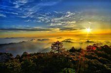 三清山风景区-三清山-当地向导三清山婺源八一旅游