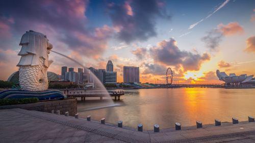新加坡5日4晚自由行·【初游力荐】4晚连住/酒店任选/万人出行