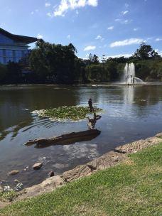 昆士兰大学-布里斯班-M26****904