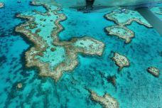 大堡礁-大堡礁-无比寻常X