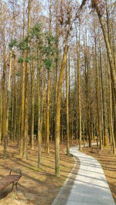 福州国家森林公园-福州-131****6110