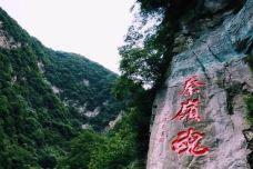 秦岭-宝鸡-流年唉