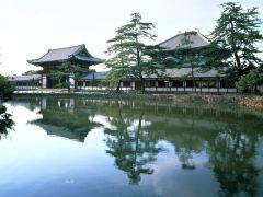 高野山+奈良の礼佛之旅