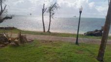 海滨大道-塞班岛-不会飞的燕子