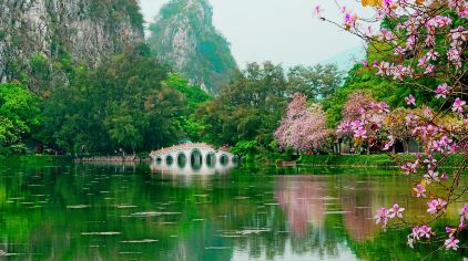 星湖春晓卢健荣 (2)