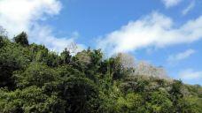 庞普勒斯植物园-毛里求斯-鬼魅琪儿