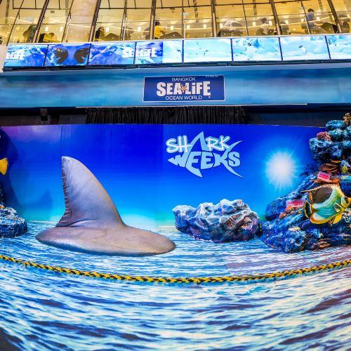 SEA LIFE Bangkok Ocean World Ticket