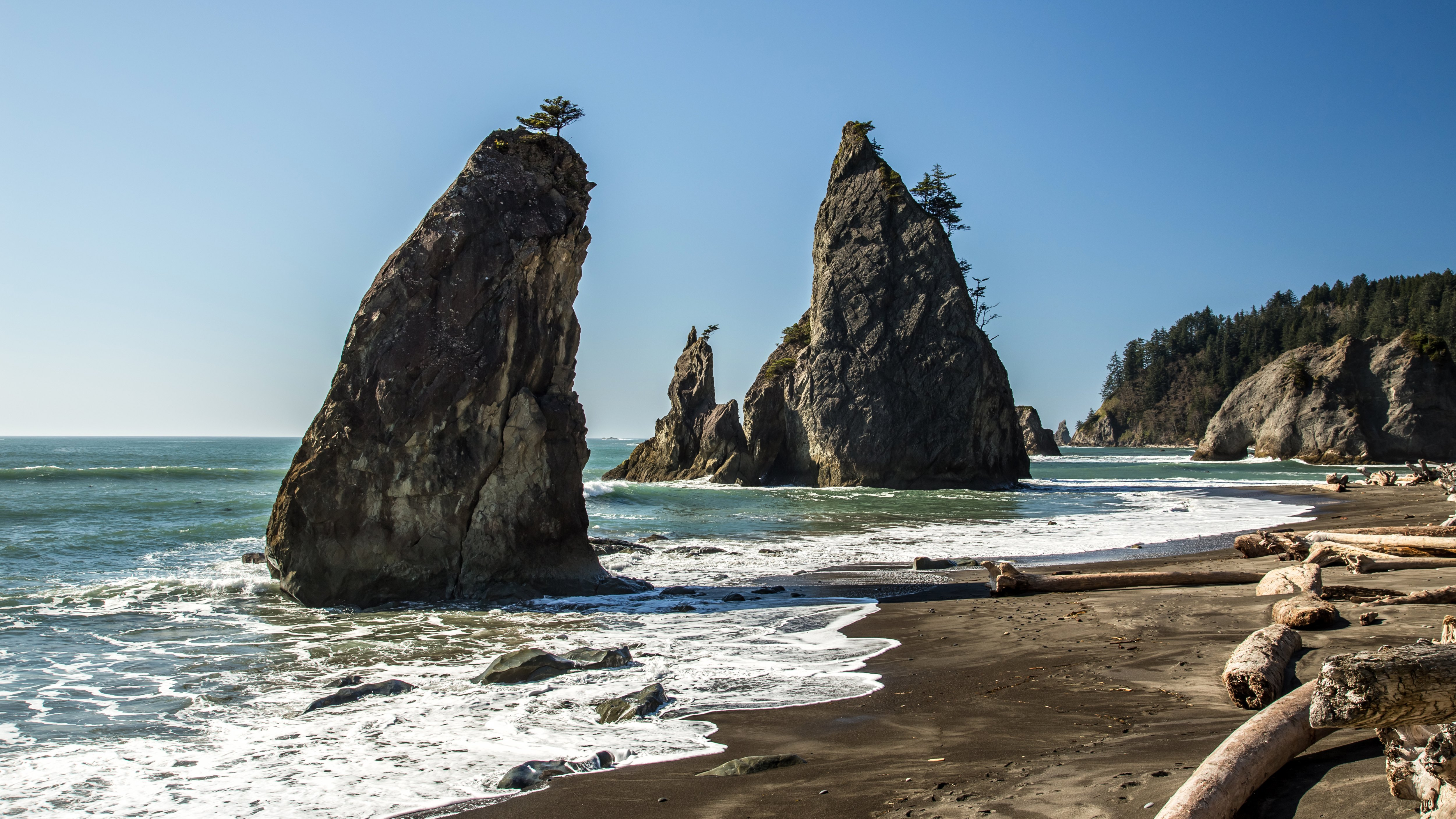 Olympic National Park One Day Tour from Seattle