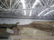 刘家峡恐龙国家地质公园-临夏-118****147
