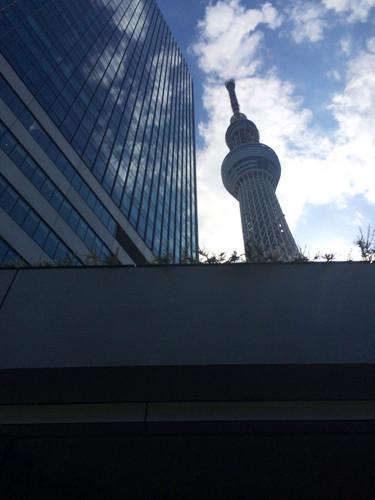 日本有多少人口2014_日本强征高价口罩