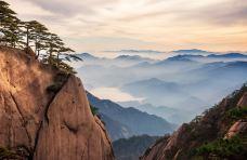 安徽 黄山-黄山风景区-黄山-储卫民